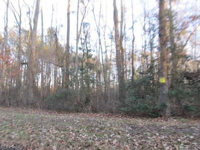 40-75 Featherbed Ln, Gloucester County, VA 23061 (#10176727) :: Abbitt Realty Co.