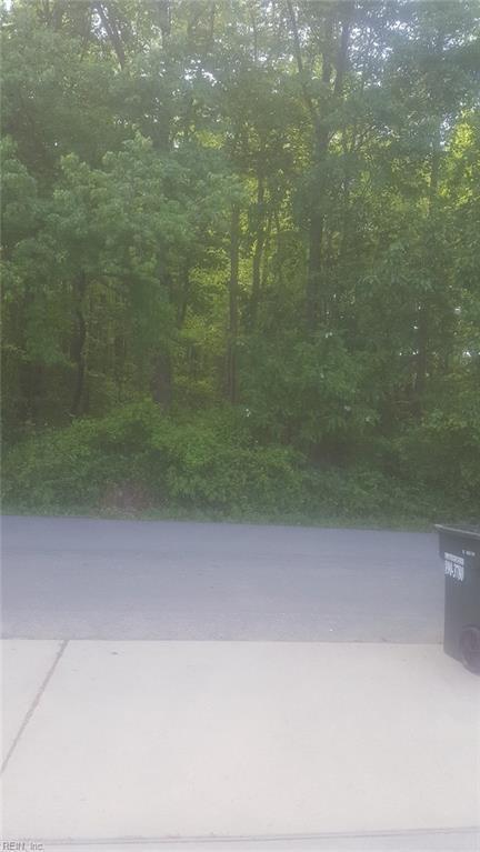 300 Maple Rd, York County, VA 23690 (MLS #10193628) :: AtCoastal Realty