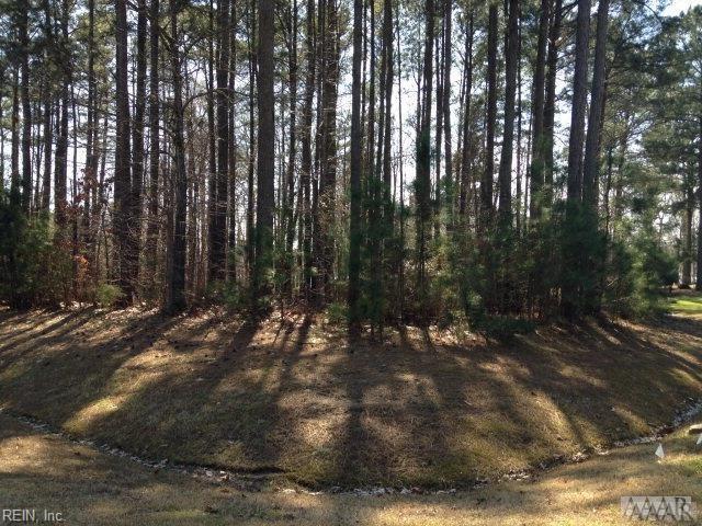 42 Yeopim Creek Cir, Perquimans County, NC 27944 (MLS #10204226) :: Chantel Ray Real Estate