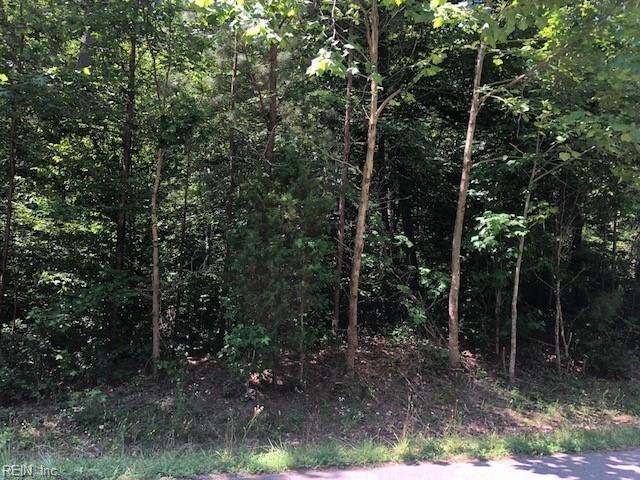 104 Levinson Pass, York County, VA 23188 (#10204872) :: Abbitt Realty Co.