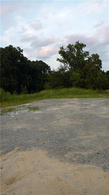 709 W Constance Rd, Suffolk, VA 23434 (MLS #10208426) :: Chantel Ray Real Estate