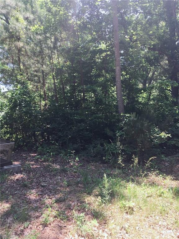 35 Luke St, Nottoway County, VA 23824 (MLS #10208797) :: Chantel Ray Real Estate