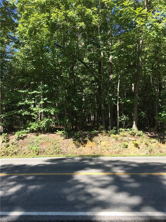 215 Neck O Land Rd, James City County, VA 23185 (MLS #10211988) :: AtCoastal Realty