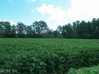 8 Acre New Hope Rd, Gloucester County, VA 23107 (#10212347) :: Austin James Real Estate