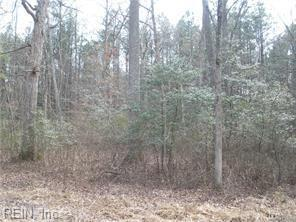 Lot 89 Cypress Trl, Gloucester County, VA 23061 (MLS #10215862) :: Chantel Ray Real Estate