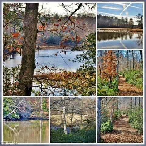 6616 Cranstons Mill Pond Rd, James City County, VA 23168 (#10217638) :: The Kris Weaver Real Estate Team