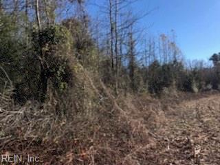 23 Dilday Ln, Gates County, NC 27937 (MLS #10229216) :: Chantel Ray Real Estate