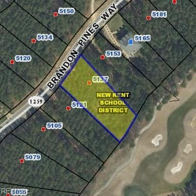 5137 Brandon Pines Way, New Kent County, VA 23140 (#10229366) :: Coastal Virginia Real Estate