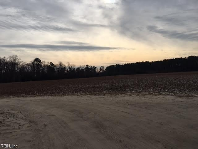 107+AC Line Pine Rd, Southampton County, VA 23851 (#10231553) :: Vasquez Real Estate Group