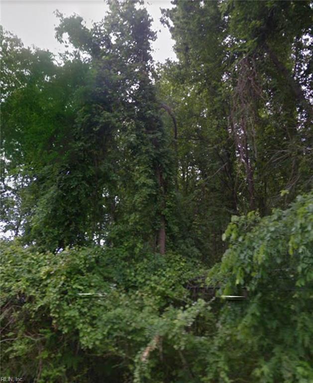 5 Ac Indian River Rd, Virginia Beach, VA 23456 (#10236662) :: Berkshire Hathaway HomeServices Towne Realty