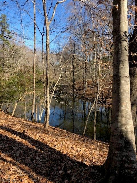 LOT 2 Labrador Ln, Suffolk, VA 23434 (#10237757) :: Abbitt Realty Co.