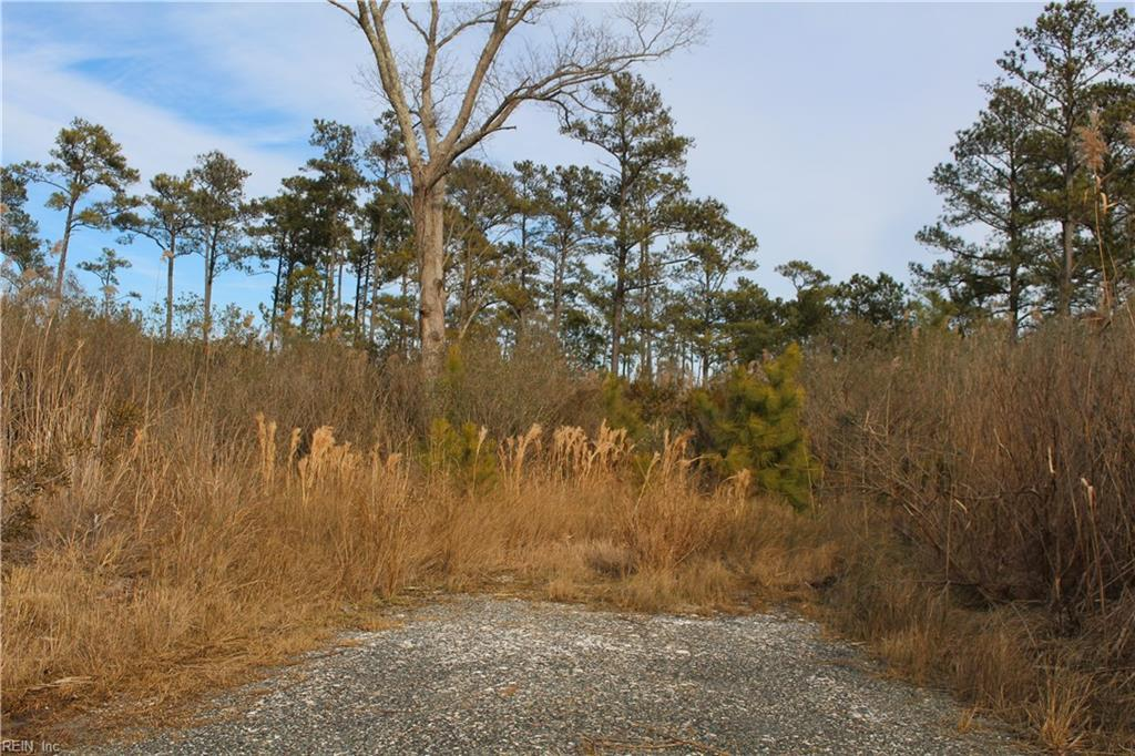 10111 Smiley Rd - Photo 1