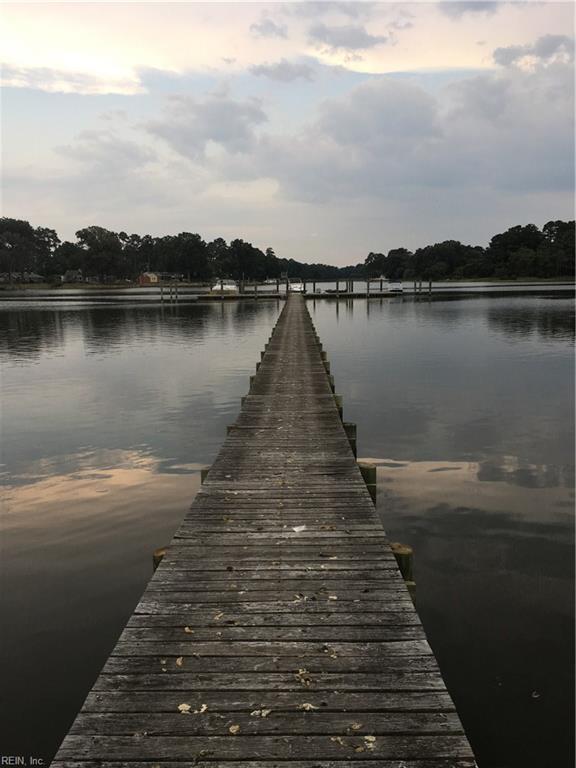460 Shorewood Ct, Norfolk, VA 23502 (MLS #10238741) :: AtCoastal Realty