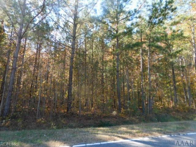 2418 Tulls Creek Rd, Currituck County, NC 27958 (#10240751) :: Abbitt Realty Co.