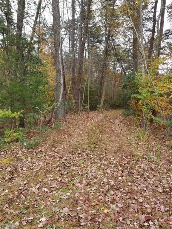 1.59ac Zion Branch Rd, Middlesex County, VA 23149 (#10241765) :: Abbitt Realty Co.