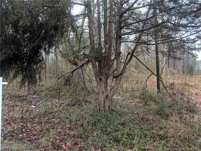 301 Camp Rd, James City County, VA 23168 (#10241771) :: The Kris Weaver Real Estate Team