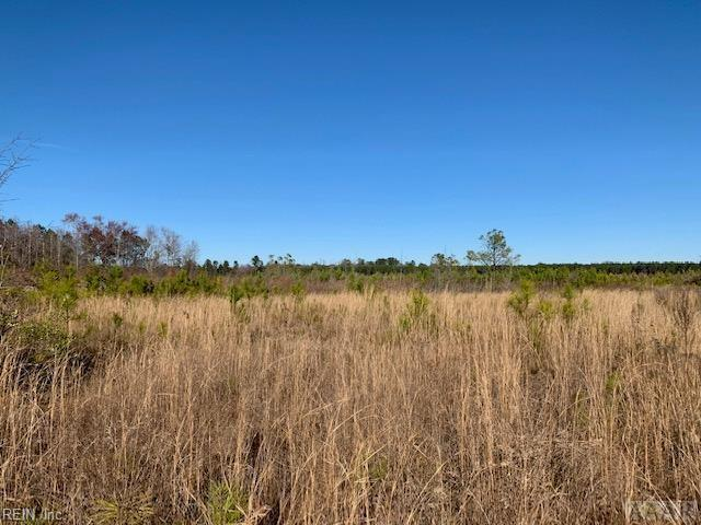 Lot 1 Hwy 45 Hwy S, Hertford County, NC 27942 (#10243503) :: Atlantic Sotheby's International Realty