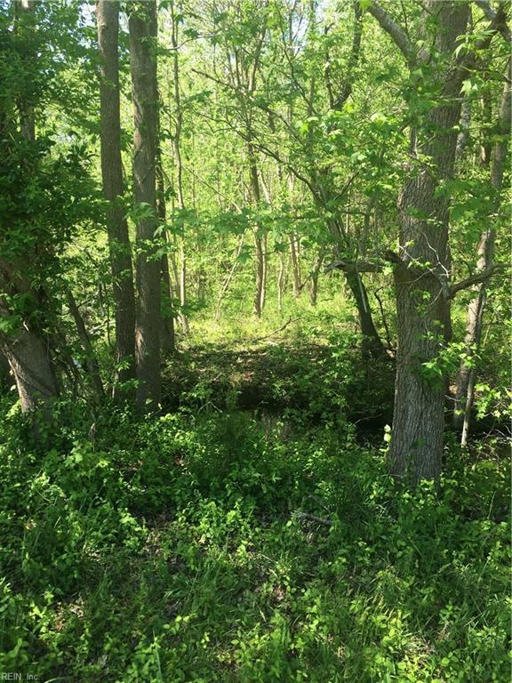 Lot 1 Peaceful Ponds Dr, Northampton County, VA 23398 (#10255247) :: The Kris Weaver Real Estate Team