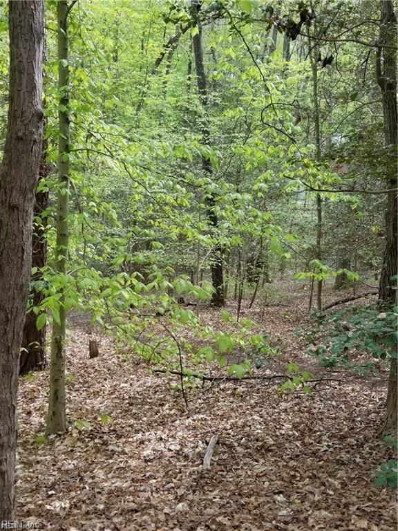 1.61AC Old Stage Rd, James City County, VA 23168 (#10255504) :: Abbitt Realty Co.