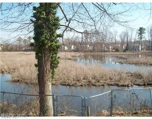 311 Cattail Ln, York County, VA 23693 (MLS #10259167) :: AtCoastal Realty