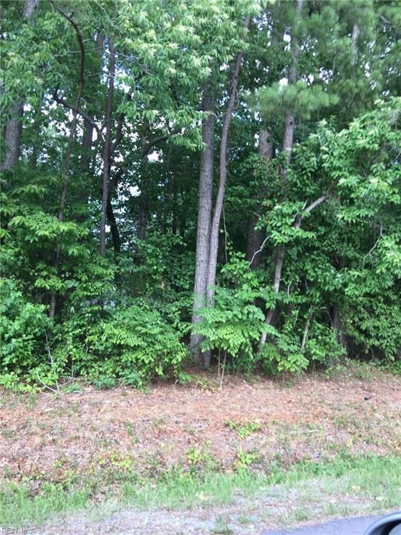 126 Laurel St, Perquimans County, NC 27944 (MLS #10267819) :: Chantel Ray Real Estate