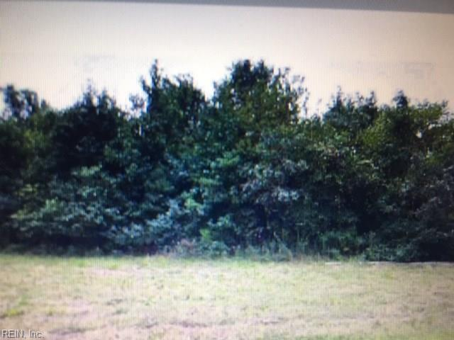 lot 6 Burwells Bay Rd, Isle of Wight County, VA 23430 (#10268749) :: Momentum Real Estate
