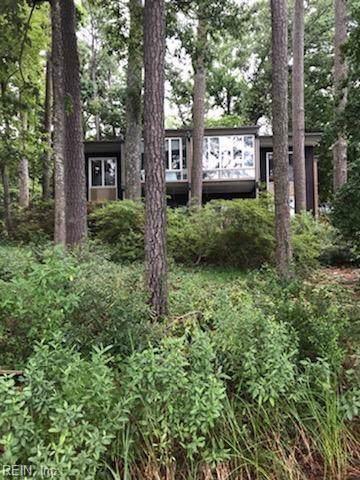 611 Haystack Landing Rd, Newport News, VA 23602 (#10277358) :: Abbitt Realty Co.