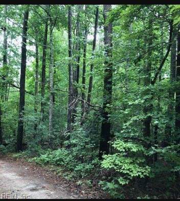 4.96ac Wild Acres Trl, Gloucester County, VA 23061 (MLS #10286359) :: Chantel Ray Real Estate