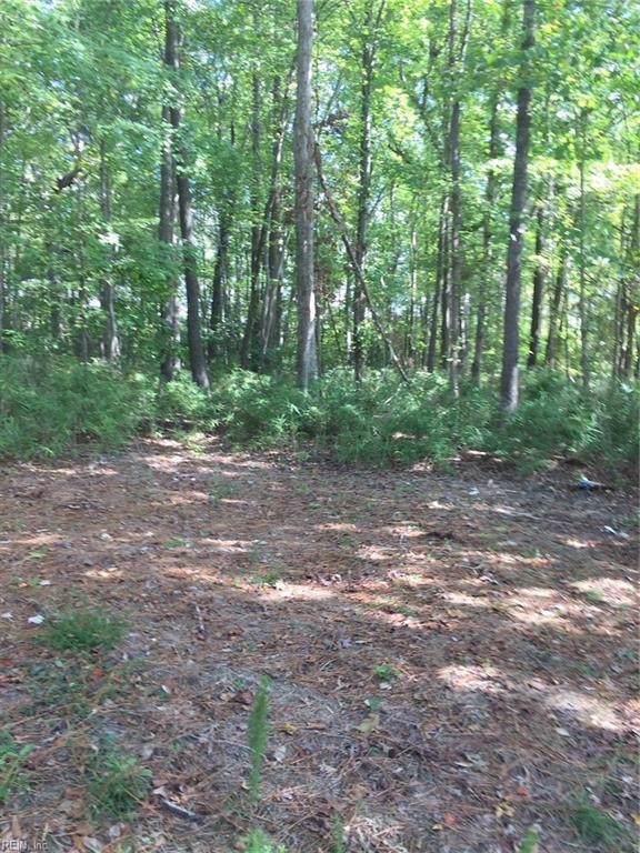 1802 Monticello Vw, Suffolk, VA 23434 (#10287337) :: Austin James Realty LLC