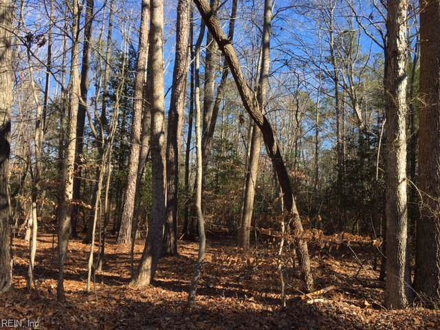 5.37ac Rolfe Hwy, Surry County, VA 23883 (#10290963) :: Atlantic Sotheby's International Realty