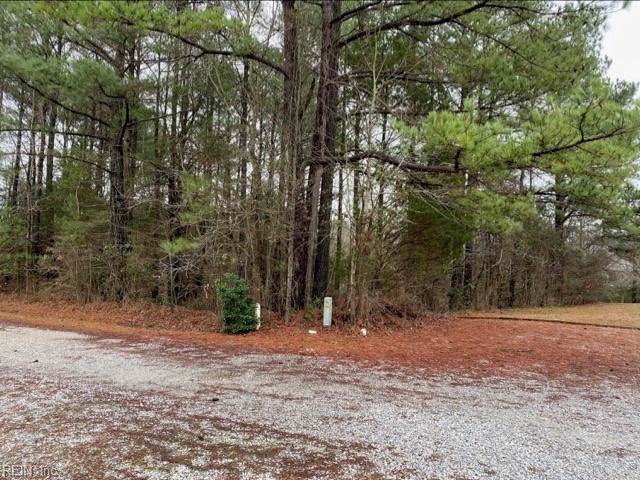 5300 Olde Towne Rd, James City County, VA 23188 (MLS #10298911) :: AtCoastal Realty