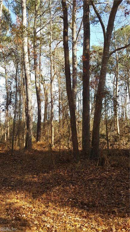 1 Ac Drake Rd, Southampton County, VA 23851 (MLS #10301865) :: Chantel Ray Real Estate