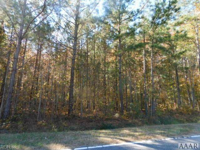 2418 Tulls Creek Rd, Currituck County, NC 27958 (MLS #10307041) :: Chantel Ray Real Estate