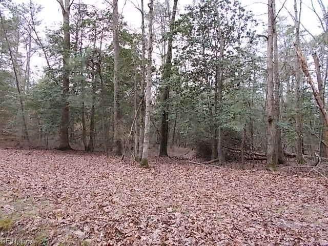 5.21ac Beaver Dr, Gloucester County, VA 23061 (MLS #10311484) :: Chantel Ray Real Estate