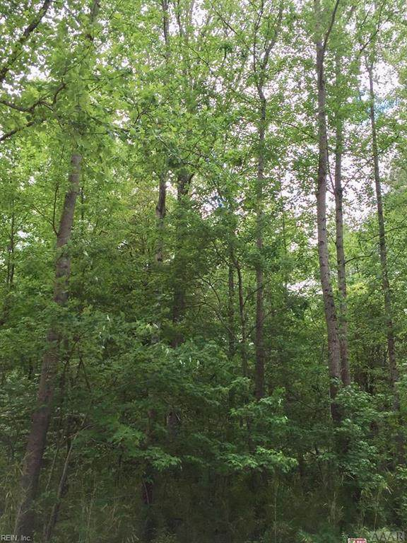 4.2ac Rosecroft Dr, Pasquotank County, NC 27909 (#10319601) :: AMW Real Estate