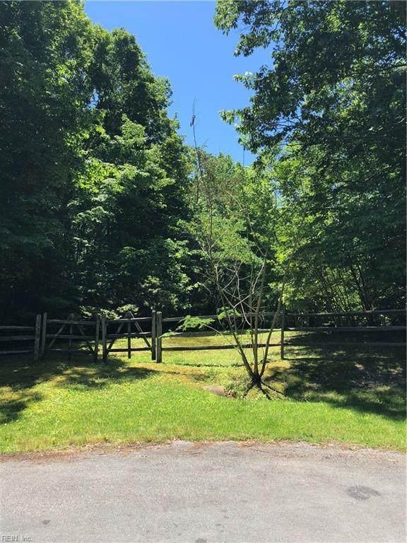 124 Wilderness Ln, James City County, VA 23188 (#10324634) :: The Kris Weaver Real Estate Team
