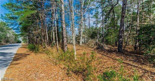 1+ Ac River Bend Trl, New Kent County, VA 23089 (#10350132) :: Berkshire Hathaway HomeServices Towne Realty