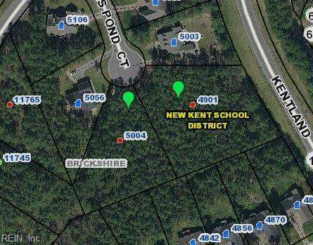 5004 Kings Pond Ct, New Kent County, VA 23140 (#10354652) :: Atkinson Realty