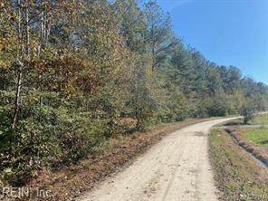 62+ac Irishmen Ln, Mathews County, VA 23035 (#10355228) :: Rocket Real Estate