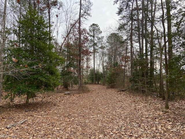 1 Ac Brownsview Ln, Surry County, VA 23883 (#10357095) :: Atkinson Realty