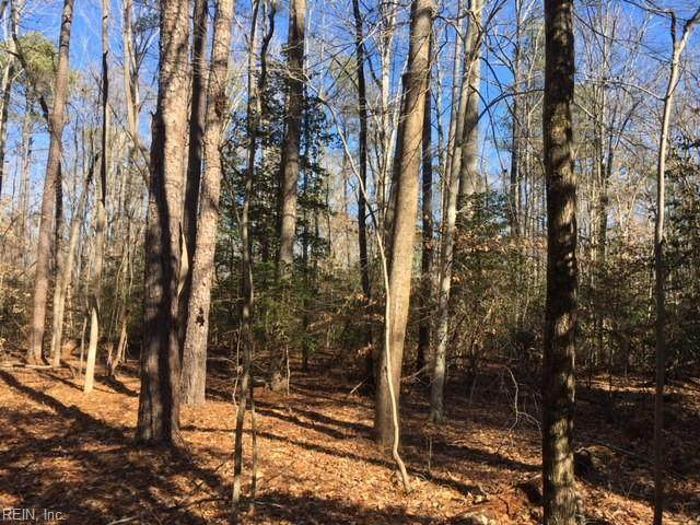 5.37ac Rolfe (Lot F) Hwy, Surry County, VA 23883 (#10361906) :: Tom Milan Team