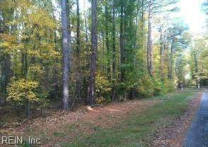 3.31ac Raymond Brown Jr. Ln, Gloucester County, VA 23061 (#10362642) :: Atkinson Realty