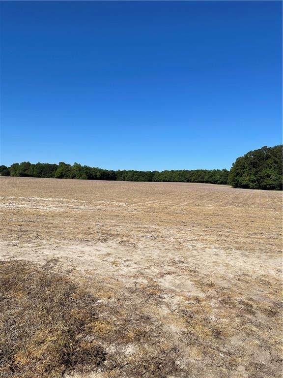 9334 Wrenns Mill Rd, Isle of Wight County, VA 23430 (#10377343) :: Rocket Real Estate
