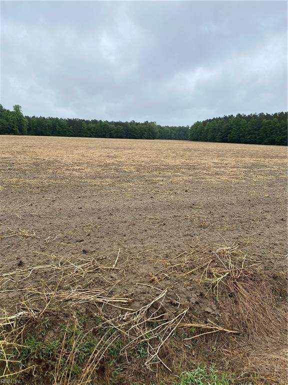 100ac Moorings Rd, Surry County, VA 23839 (#10381406) :: Berkshire Hathaway HomeServices Towne Realty