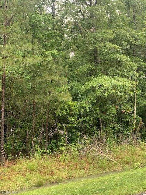 2418 Tulls Creek Rd, Currituck County, NC 27958 (#10382348) :: Berkshire Hathaway HomeServices Towne Realty