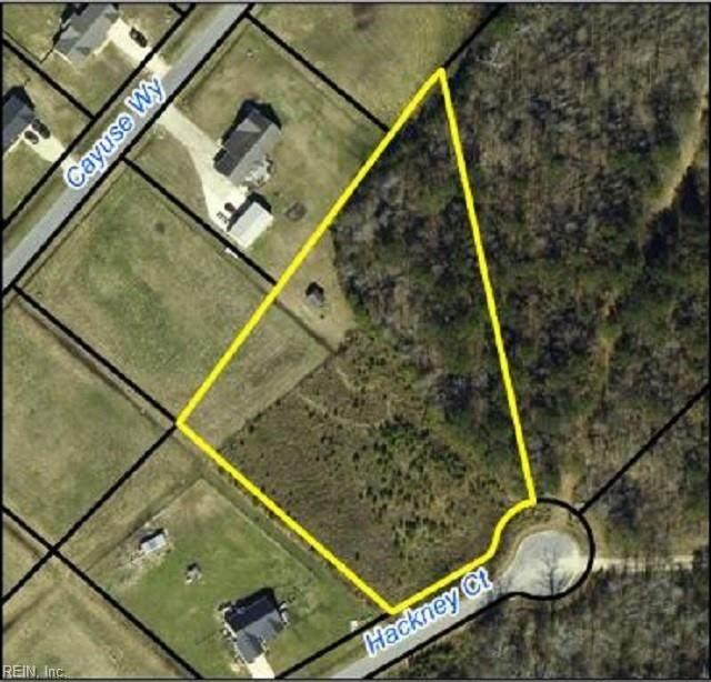 107 Hackney Ct, Pasquotank County, NC 27909 (#10389243) :: The Kris Weaver Real Estate Team
