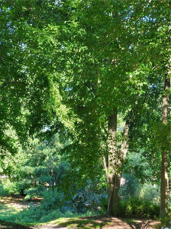 1801 Prince Edward Dr, Chesapeake, VA 23322 (#10402769) :: Heavenly Realty