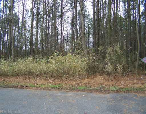 7.1 Ac Maple Ln - Photo 1