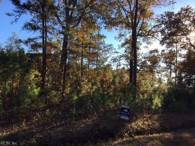 LOT 2 Comans Well Rd, Sussex County, VA 23897 (#10105073) :: Resh Realty Group