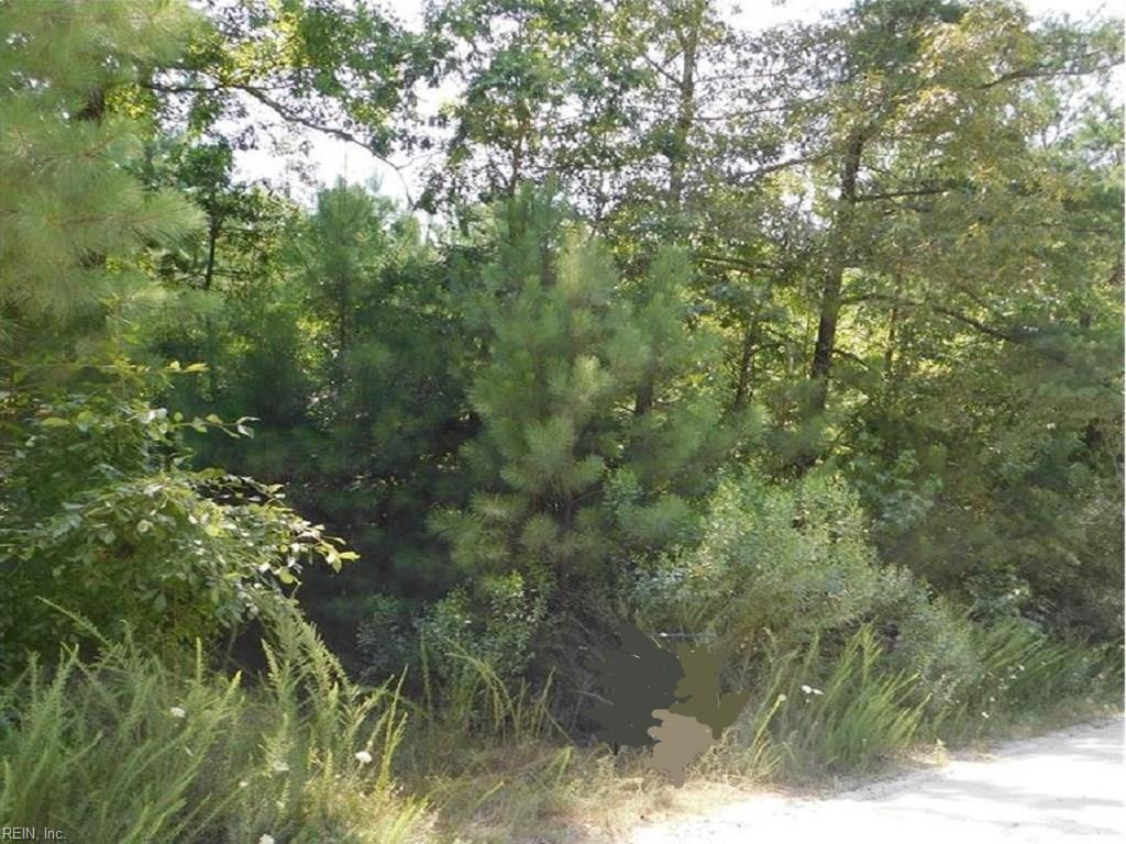 12345 Horse Run Rd - Photo 1